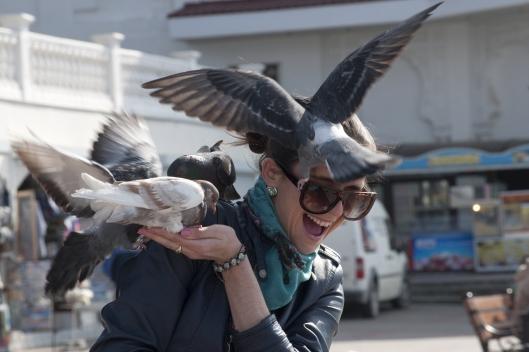 I love...birds